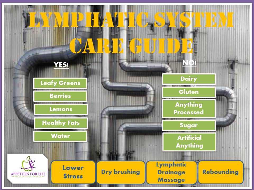 Lymphatic System Care Guide