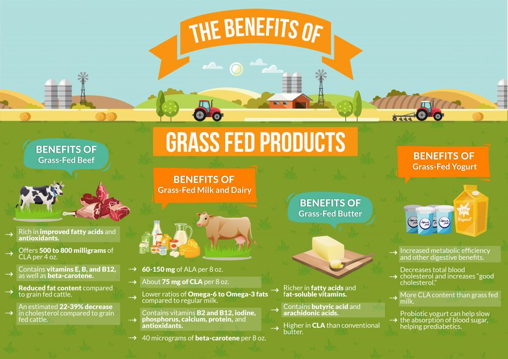 The-Benefits-of-Grass-Fed-Products-1024x724